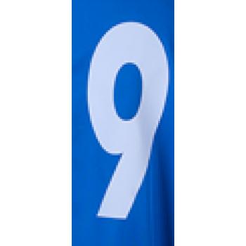 Номер наклейка Ayoun 1609